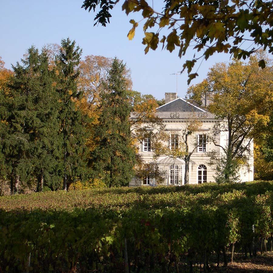 château+vigne-et-arbres